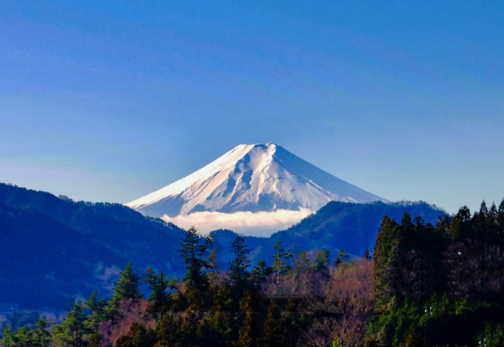 真木より富士山を望む